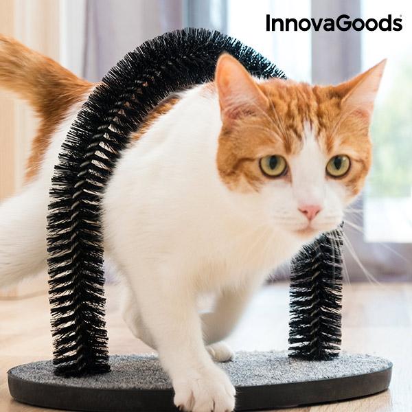 veľký vibrátor v mačička pics